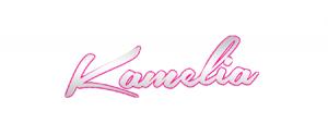 kamelia-logo-web-roser-steffen-info-sr-partner